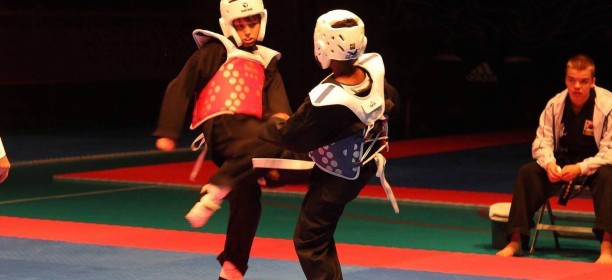 WKF 4th Nordic Hapkido Cup and Seminar – Sweden