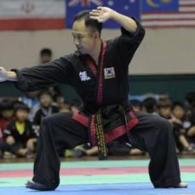 Master Steve Seo